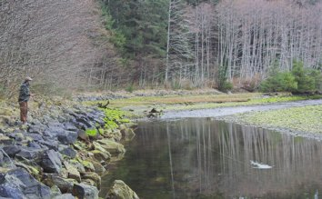 Fishing for Steelhead