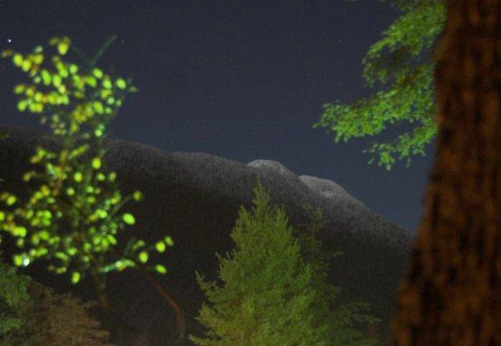 Gavan Hill at Night