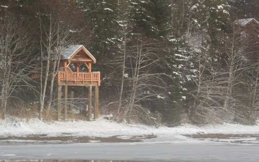 Starrigavan Recreation Area Bird Viewing Shelter