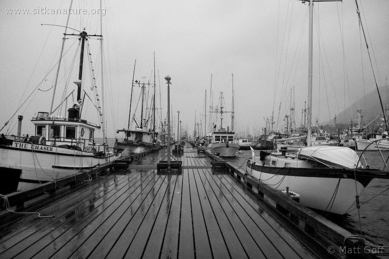 Eliason Harbor
