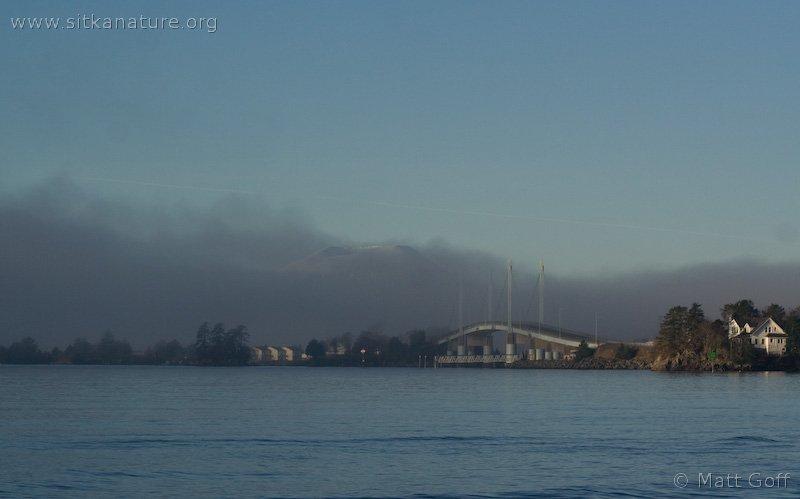 Fog and O'Connell Bridge