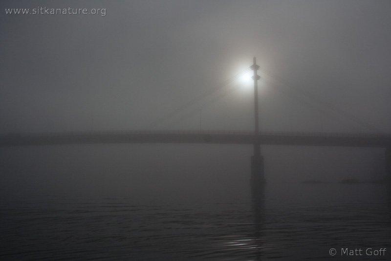 O'Connell Bridge in the Fog