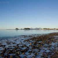 Ice on Totem Park Beach