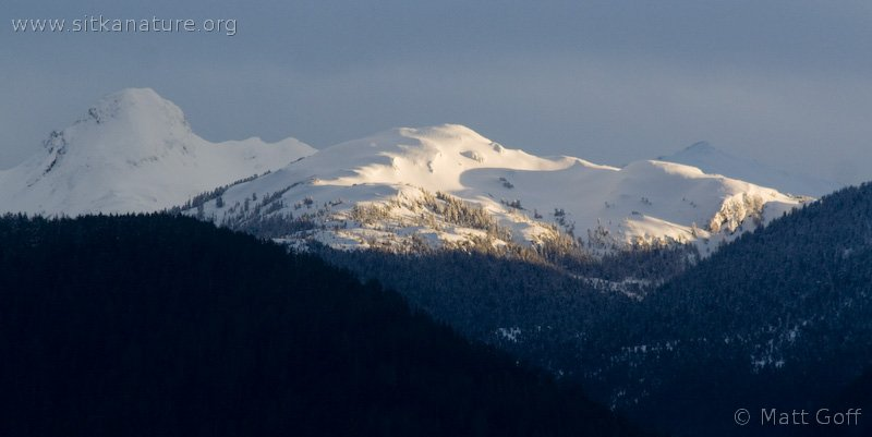 Evening Sunlight on Mountains