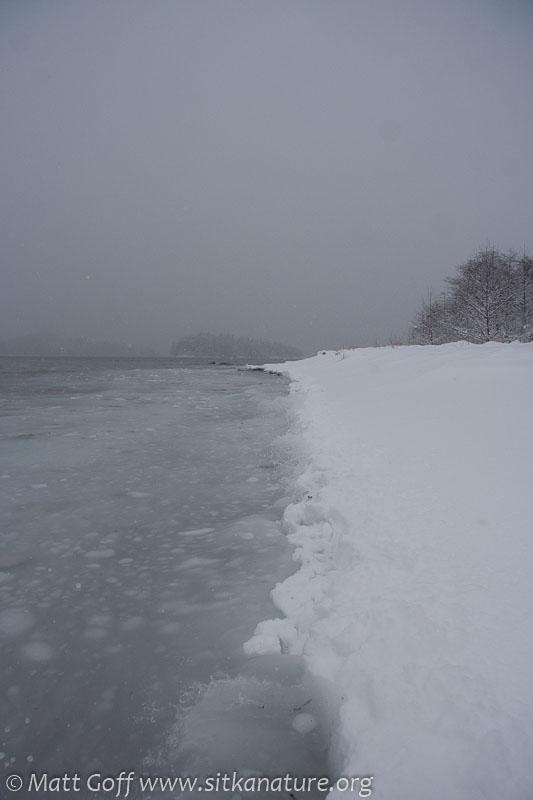 20070302-20070302-totem_park_snow-4.jpg