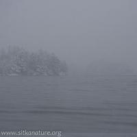 20070302-20070302-totem_park_snow-1.jpg