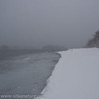 20070302-20070302-totem_park_snow-2.jpg