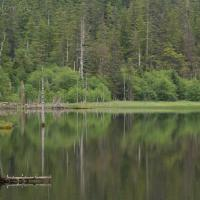 Thimbleberry Lake