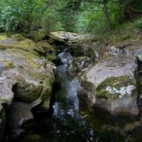 20070818-freds_creek-2.jpg