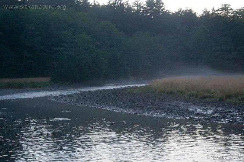 20070819-estuary_mist.jpg