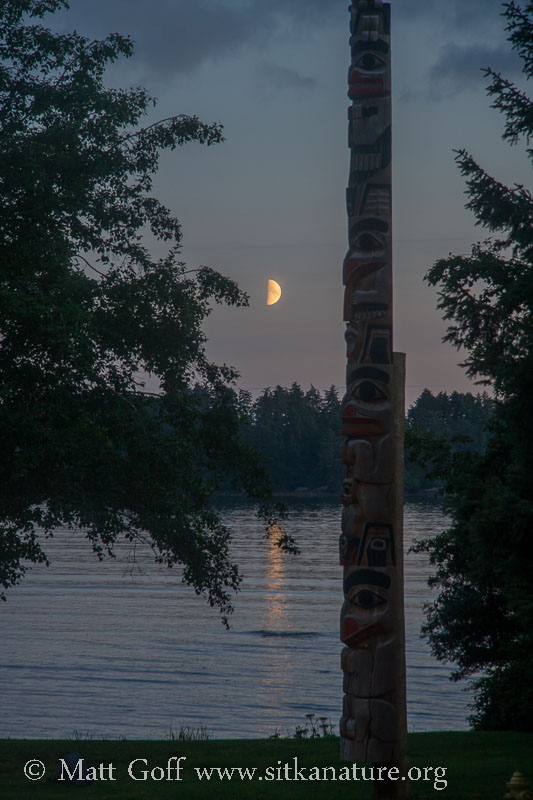Moon and Totem