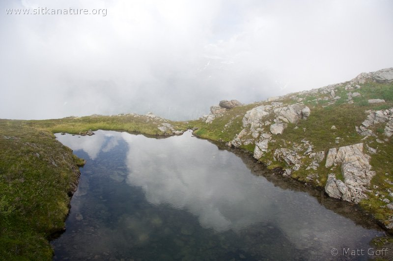 20070903-alpine_pool.jpg