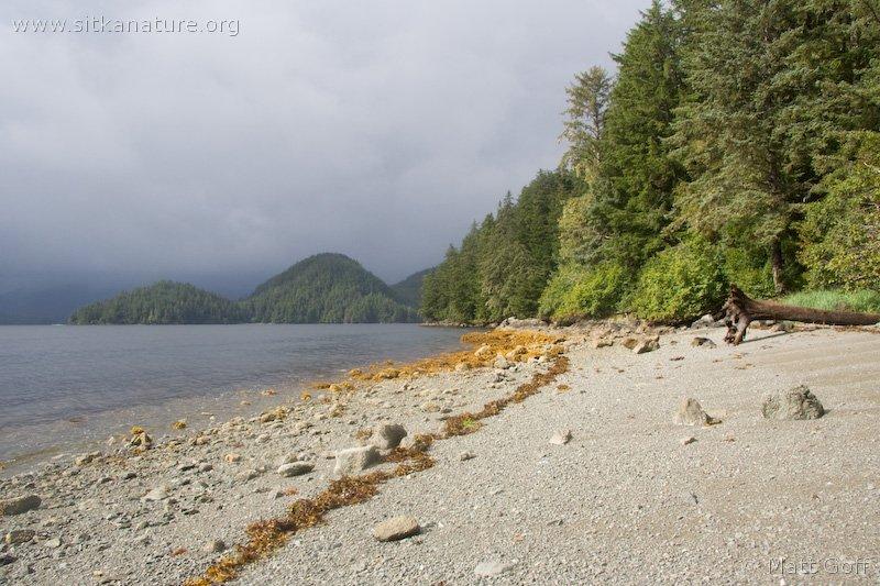 20070905-beach.jpg