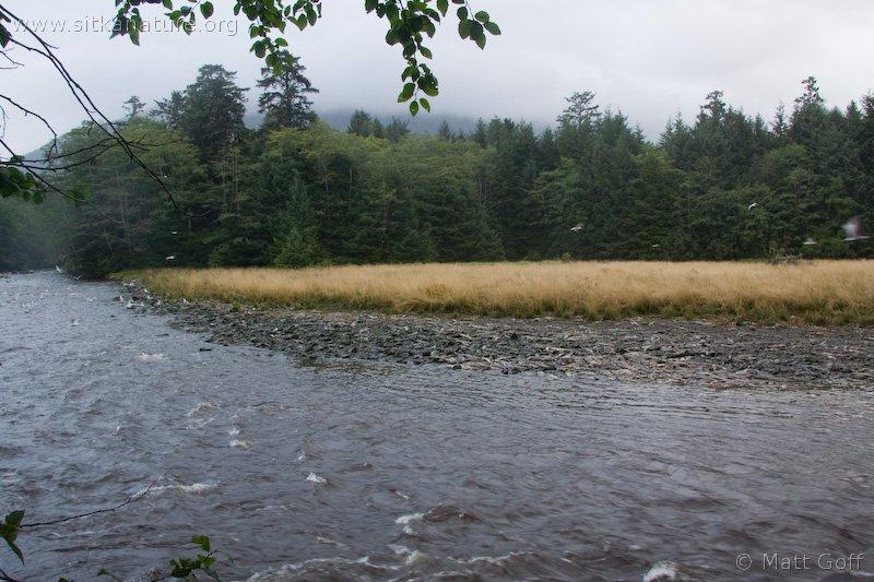 20070915-indian_river.jpg