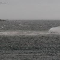 Waves at Totem Park