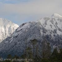 20071104-mountain_snow-2.jpg