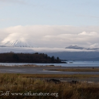 Shrouded Mt. Edgecumbe