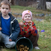 20071122-connor_rowan_potatoes-2.jpg