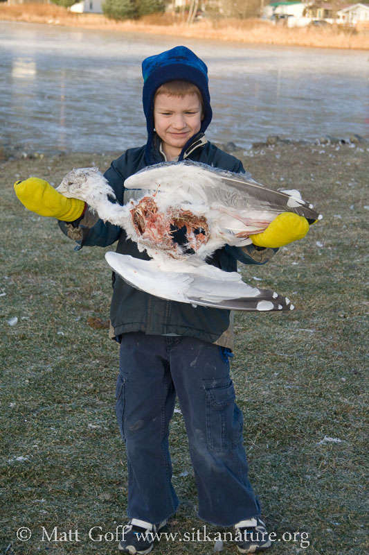 Connor with Dead Gull