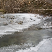 Icy Indian River