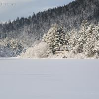 Swan Lake Covered in Snow