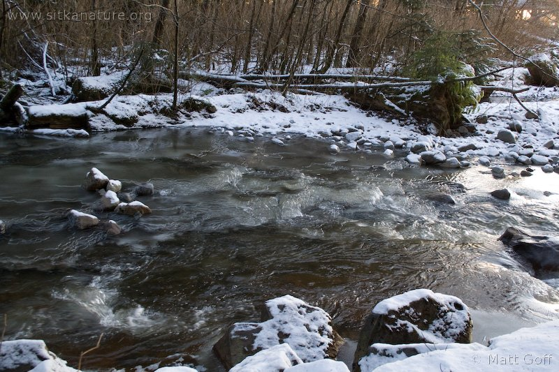Ice in Granite Creek