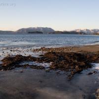 Halibut Point Recreation Area Beach