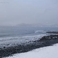Sandy Beach View