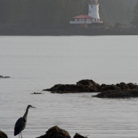 Rockwell Lighthouse and a Heron