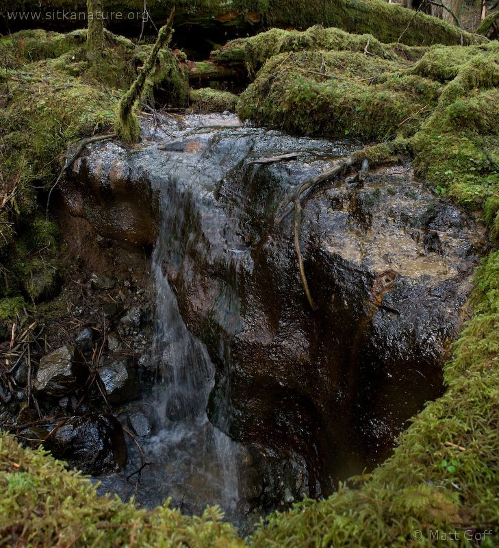 Indian River Valley Rill