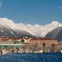 Sitka Harbor and Mountains