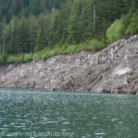 Blue Lake Shoreline
