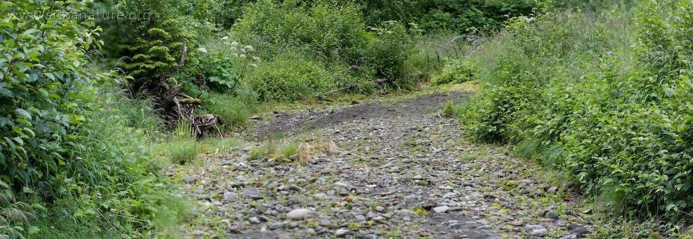 20080722-gravelbar.jpg