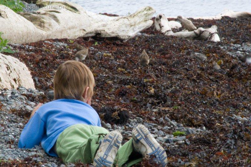 Rowan Watching Birds