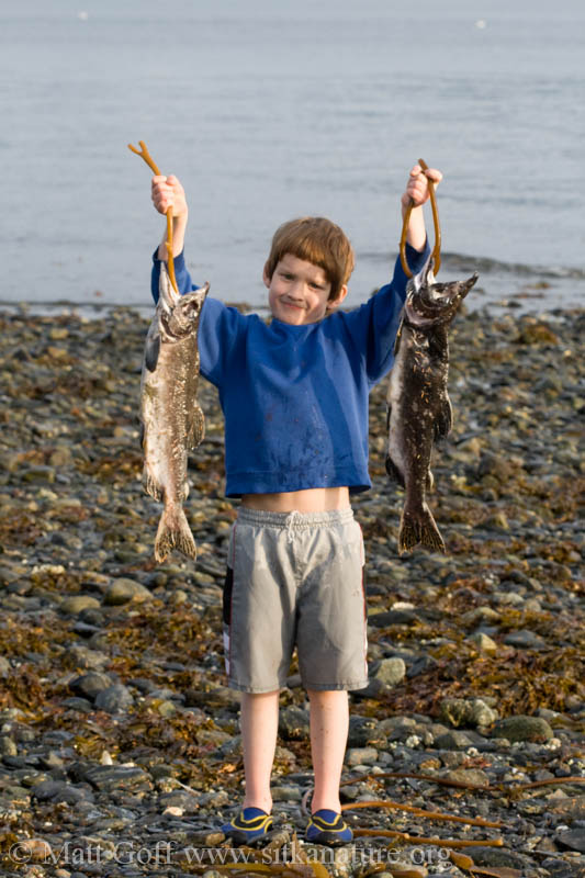 Connor's Catch