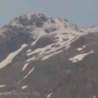 Bear Mountain Snow