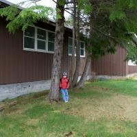 Rowan and Habitat