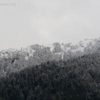 20081029-fresh_snow-2.jpg