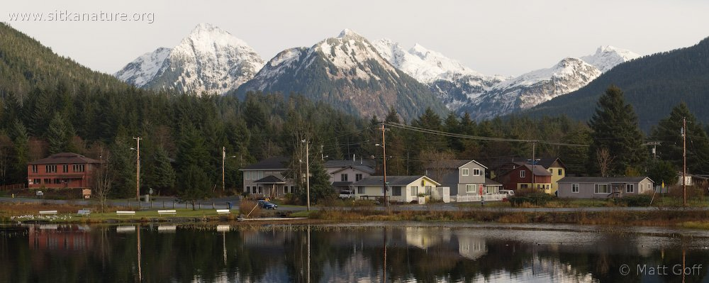 Swan Lake and Sisters Composite