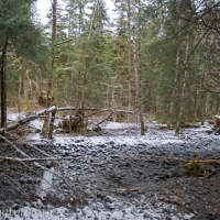 Upper West Fork
