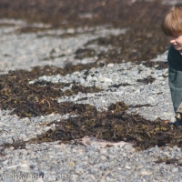 Connor and a Sandpiper