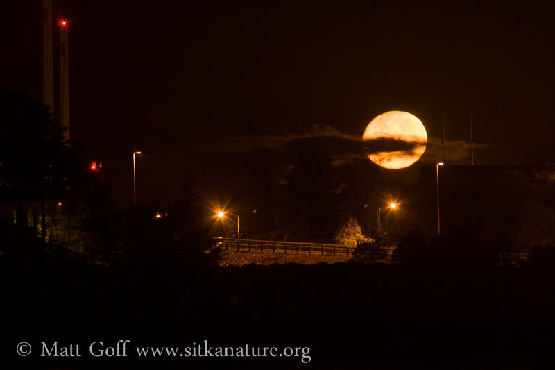 Early Morning Moonset