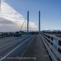 O'Connell Bridge View