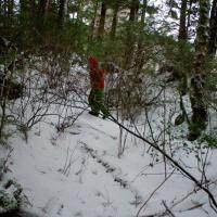 Connor Trailing Deer