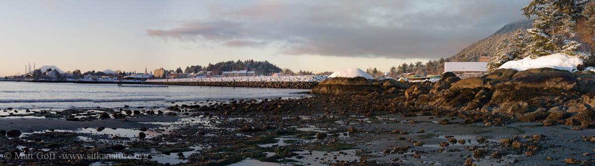 Sage Beach Panorama