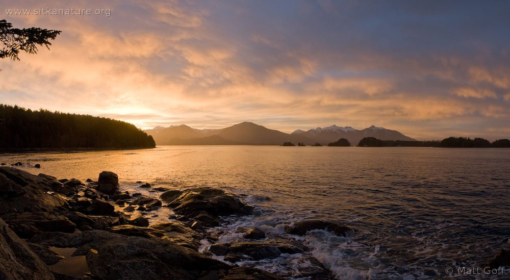 Sunrise over Totem Park