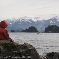 Rowan Whalewatching