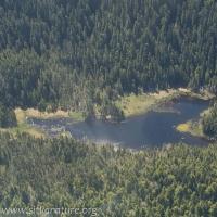 Leesoffskaia Pond