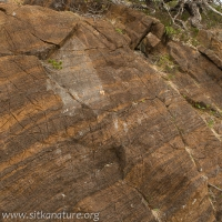 Striped Ultramafic Rock Outcrop