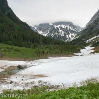 Upper Valley Blue Lake Creek
